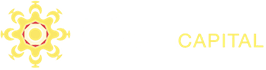 Far Horizon Capital Logo
