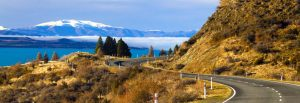 new zealand citizenship how to become a new zealand citizen
