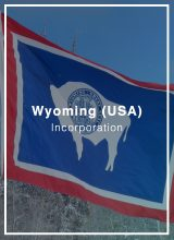 form a wyoming company and open a bank account