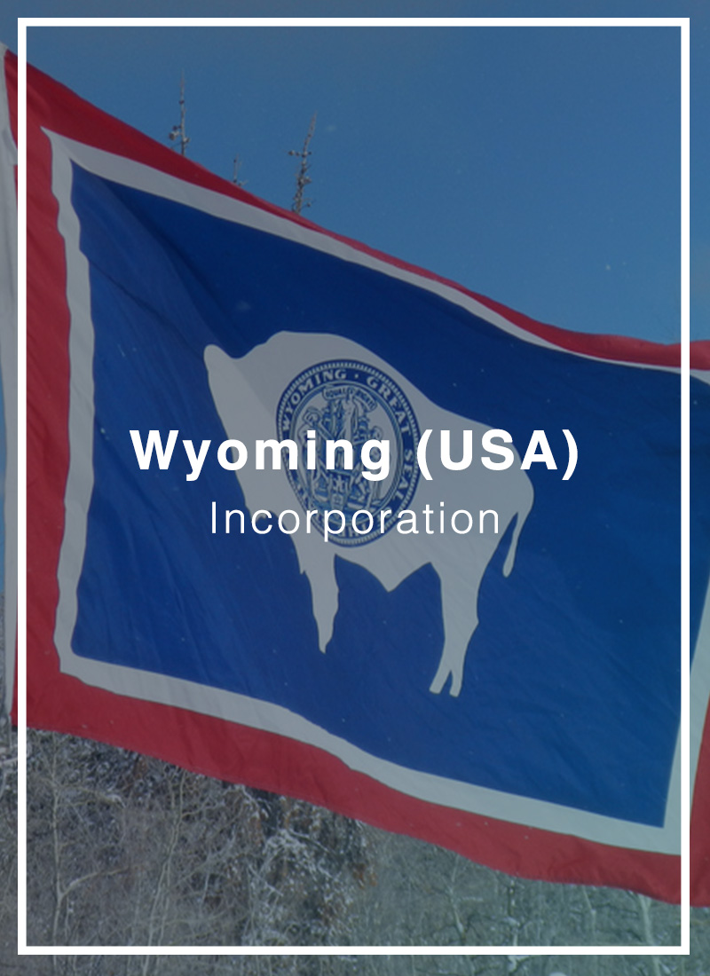 What Does Wyoming Llc Mean?
