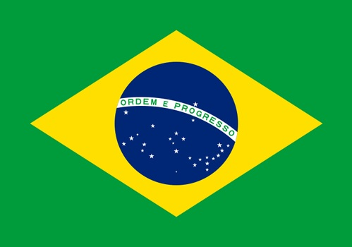 residency citizenship set up a company-brazil