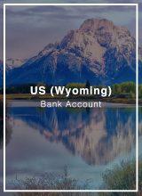 Wyoming LLC