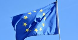 Structuring and Taxes for Companies Doing Business in the EU